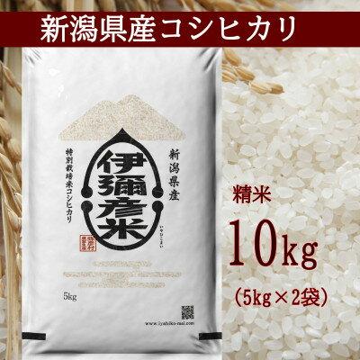 [新米先行受付]令和3年産 特別栽培米コシヒカリ「伊彌彦米」10kg