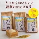 【ふるさと納税】阿賀町上川産コシヒカリ上川温泉のうんめぇ米15kg(5kg×3袋)