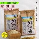 【ふるさと納税】上川温泉のうんめえ米5kg入り×2袋定期便2回【11月12月申込限定品・美味しいお米を毎月お届け】