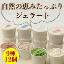 【ふるさと納税】阿賀町ジェラート9種類12個詰合せ