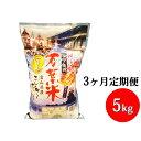 【ふるさと納税】3ヶ月定期便 越中高岡 万葉米5kg 米 精...