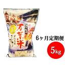 【ふるさと納税】6ヶ月定期便 越中高岡 万葉米5kg 米 精...