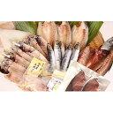 【ふるさと納税】氷見 堀与 地魚一夜干し5種と氷見鰤2種セット 【魚貝類・干物...