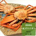 【ふるさと納税】【おすすめ】新湊産紅ズワイガニ約1kg(2〜...