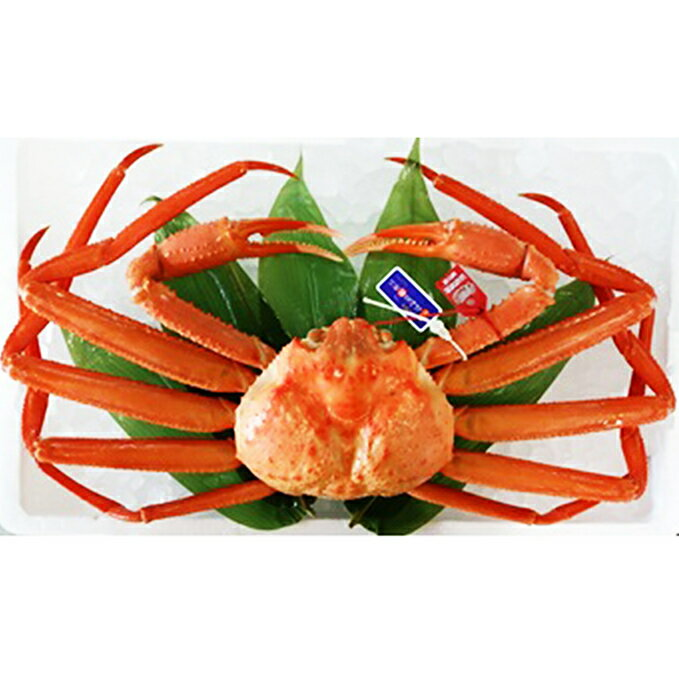 魚介類・水産加工品, カニ 1kg() 2019922020331