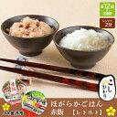 【ふるさと納税】ほがらかごはん(レトルトご飯)・レトルト赤飯
