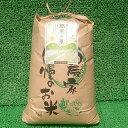 【ふるさと納税】平成29年産 七尾のコシヒカリ 10kg(特別栽培米)