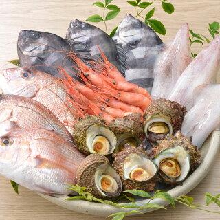 「いきいき七尾魚」鮮魚詰め合わせ