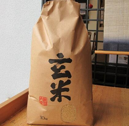 「ふるさとの味」平成29年産七尾産コシヒカリ玄米10kg ※ポストカード5枚付き