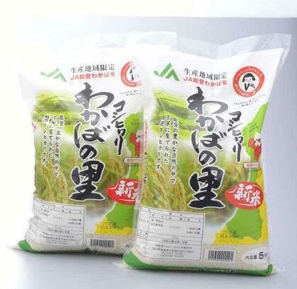 平成29年度産 産地限定コシヒカリ「わかばの里」5kg×2袋☆世界農業遺産「能登の里山里海」で育まれたお米です