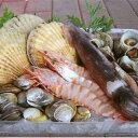【ふるさと納税】里海の幸たっぷり 海鮮バーベキューセット