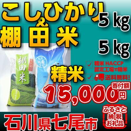 29年度産☆七尾産こしひかり5kgと棚田米5kg 味くらべセット「能登の里山里海(世界農業遺産)」で育ったお米です