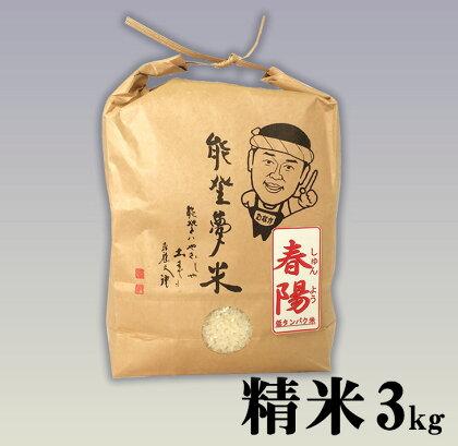 平成29年度産 七尾産「春陽」(精米3kg)☆低たんぱく米
