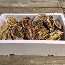 【ふるさと納税】能登牡蠣 殻付 牡蠣 約3.5kg(約30個...