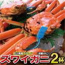 【ふるさと納税】S15.石川産加能ガニ