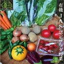 季節の有機野菜詰合せ