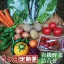 【ふるさと納税】030071. 季節の有機野菜詰合せ 3ヶ月定期便