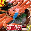 【ふるさと納税】M32. 石川産 加能ガニ(1杯)