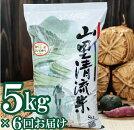 【ふるさと納税】054001.【定期便】山里清流米コシヒカリ5kg×6回(隔月)