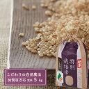 【ふるさと納税】「新米」加賀百万石特別栽培米コシヒカリ玄米5...