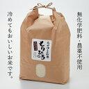 【ふるさと納税】石川県産特別栽培米コシヒカリ「もりひろ」6....