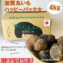 【ふるさと納税】加賀のまる芋ハッピーパック(大) 【野菜】 ...