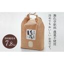 【ふるさと納税】石川県産特別栽培米コシヒカリ「もりひろ」7....