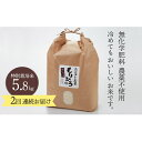 【ふるさと納税】石川県産特別栽培米コシヒカリ「もりひろ」5....