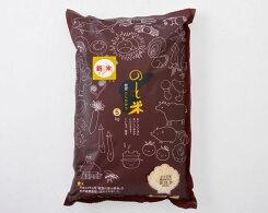 【ふるさと納税】No.146のと米精米5kg/お米コシヒカリ令和2年産石川県