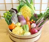 【ふるさと納税】カラー野菜で健康を届けます!中能登産 カラー野菜ふんだん詰め合わせセット