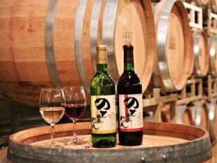 【ふるさと納税】能登ワイン2本セットAの画像