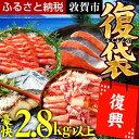 【ふるさと納税】敦賀ふっこう復袋!海鮮 豪快 詰合せ 2.8kg以上 【魚介類・蟹・カニ・かに・ズワイガニ】