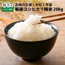 【ふるさと納税】コシヒカリ精米 20kg お米の王様!令和2