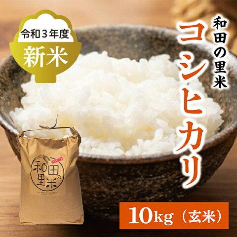 【ふるさと納税】和田の里米 10kg(玄米) 【お米】