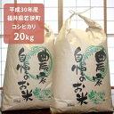 【ふるさと納税】平成30年産福井県若狭町コシヒカリ 20kg...