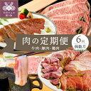 【ふるさと納税】肉 豚肉 乳酸菌豚 牛肉 鶏肉 定期便 セッ...