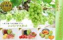 【ふるさと納税】【3ヶ月お届け!】 山梨産 フルーツ 果物詰