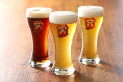 【ふるさと納税】富士山麓生まれの誇り 「ふじやまビール」 1L×3種類 地ビール クラフトビール 飲み比べ セット コロナ 支援 酒 家飲み ビール プレゼント ギフト 父の日・・・ 画像2