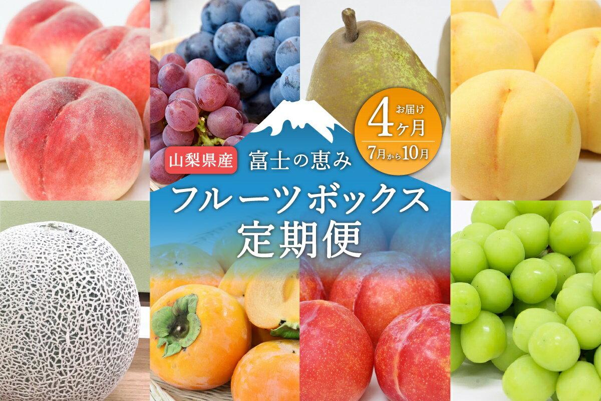 山梨産 フルーツボックス 定期便 シャインマスカット 葡萄 桃 柿 すもも ネクタリン 梨 フルーツ 詰め合わせ 高級 デザート 送料無料