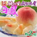 【ふるさと納税】2021年発送 山梨県産 完熟桃 白鳳系 約