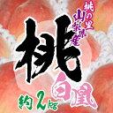 【ふるさと納税】【先行予約 開始】 桃の里 山梨県産 完熟桃