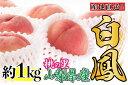 【ふるさと納税】【先行予約】 山梨の完熟桃 白鳳系 約1kg