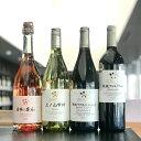 【ふるさと納税】ワイン 山梨 シャトー・メルシャン バラエティ4本 セット