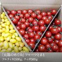【ふるさと納税】フルーツトマト 山梨県南アルプス市からお届け...