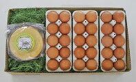 【定期便】放牧卵30個×森のバウムクーヘン1個×6ヶ月