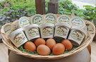 【ふるさと納税】黒富士農場特製バニラアイスクリーム10個セット