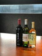人気投票甲斐市産ワイン飲み比べ3本セットCPresentsbyKaterial