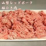 【ふるさと納税】山梨レッドポーク豚ひき肉 1kg