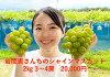 【ふるさと納税】岩間恵さんちのシャインマスカット