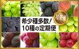 【ふるさと納税】山梨県笛吹市産日本一のフルーツの里から定期便コース(全10種)